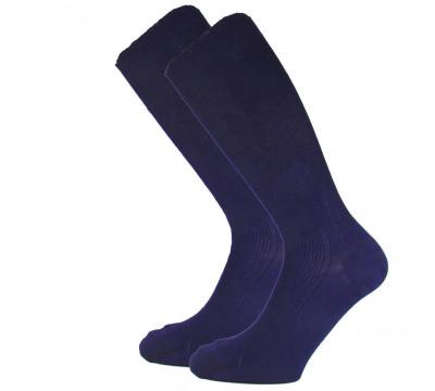 Носки мужские C441 хлопок 100%